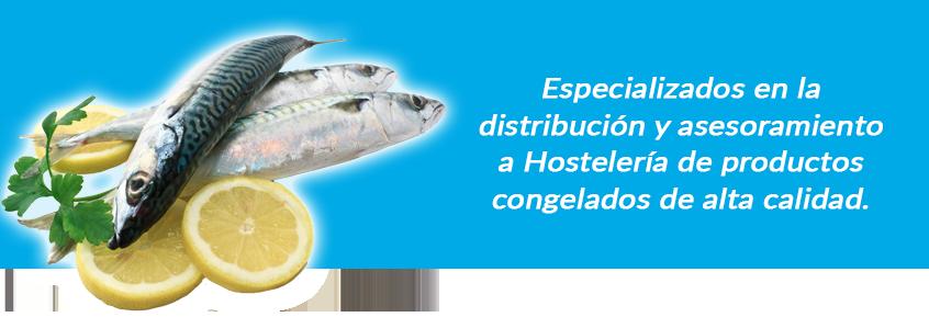 Especializado en la distribución y asesoramiento a Hostelería de productos congelados de alta calidad